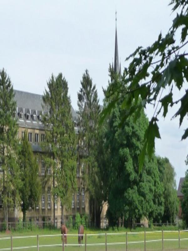 Der Friedhof der Euthanasie-Opfer